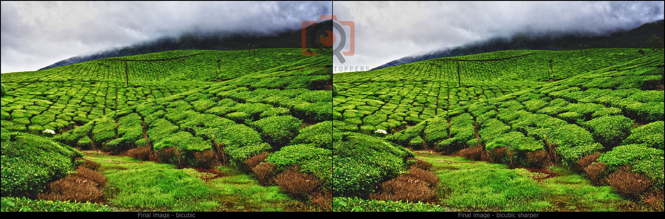 Before and after of image resize in photoshop