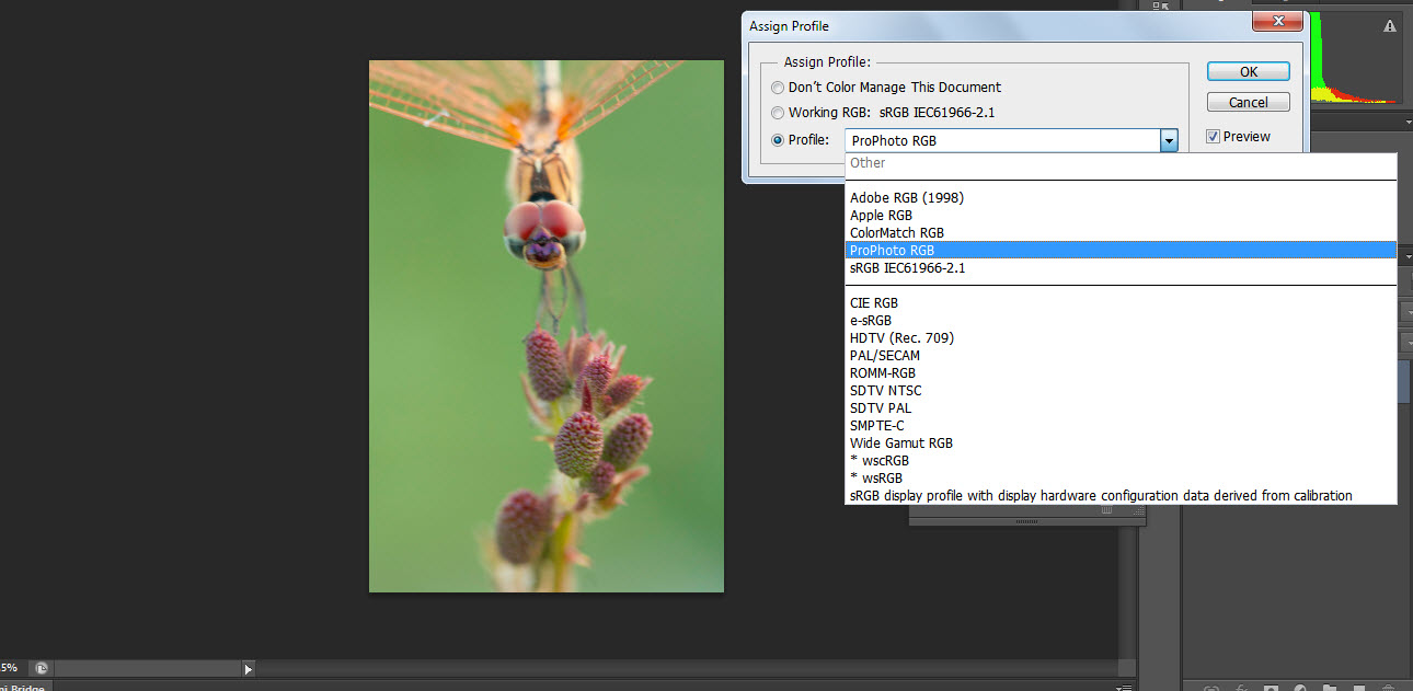 How Color Settings Work in Photoshop CS6 - dummies