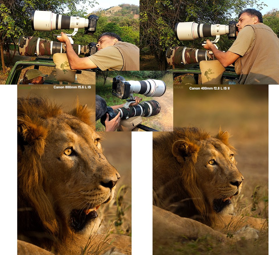 double decker technique Interview With Award Winning Wildlife Photographer Sudhir Shivaram