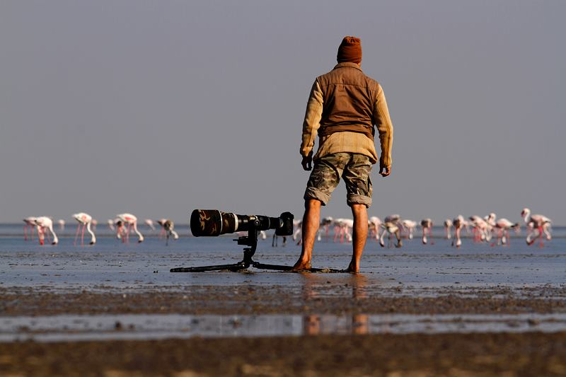 Wild life photographer sudhir shivaram on location
