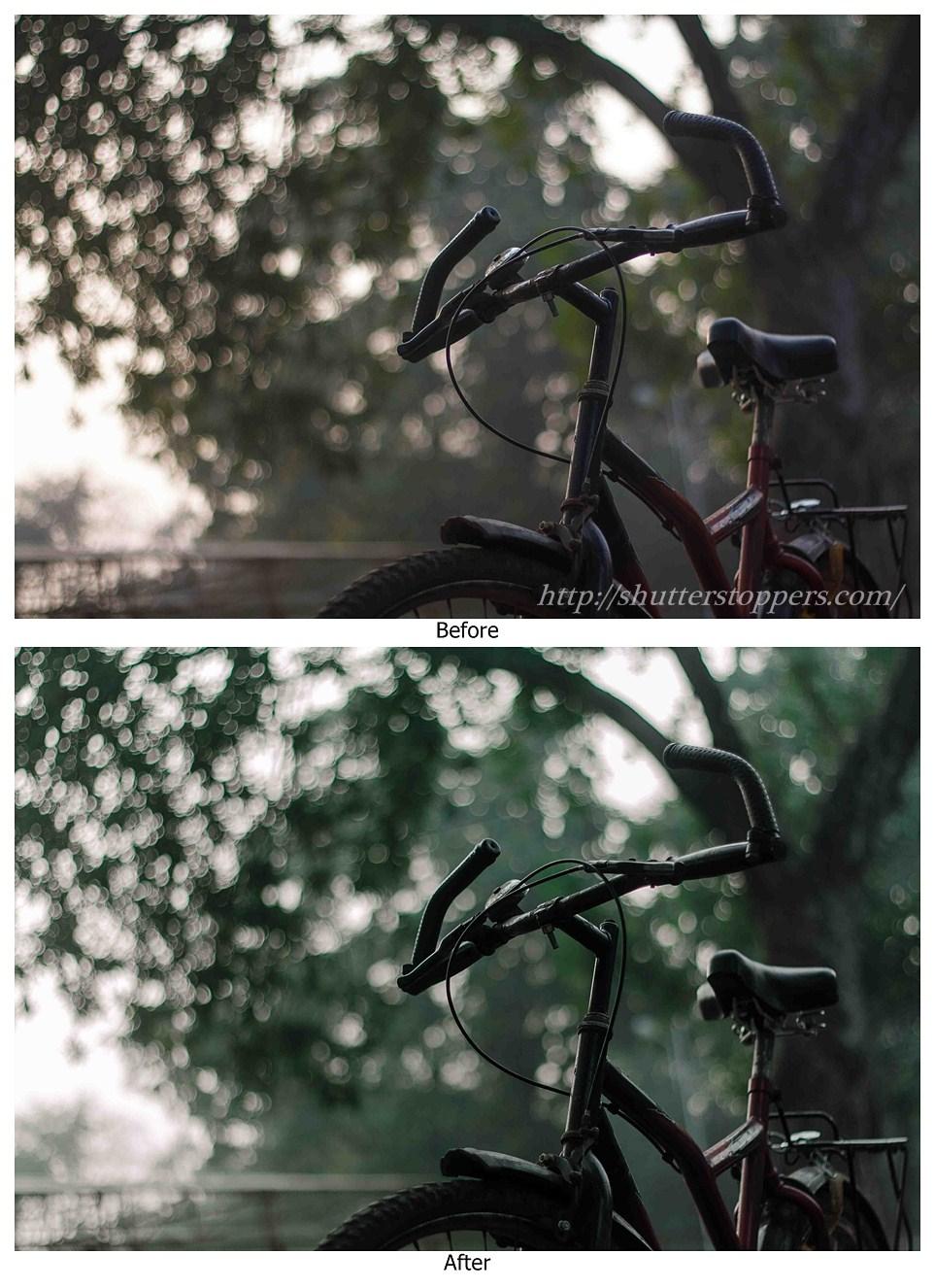 Subtle green lightroom preset before and after