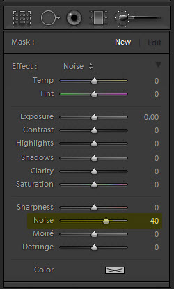 Noise effect in adjustment brush Lightroom 4 Noise Reduction Tutorial    Part 1
