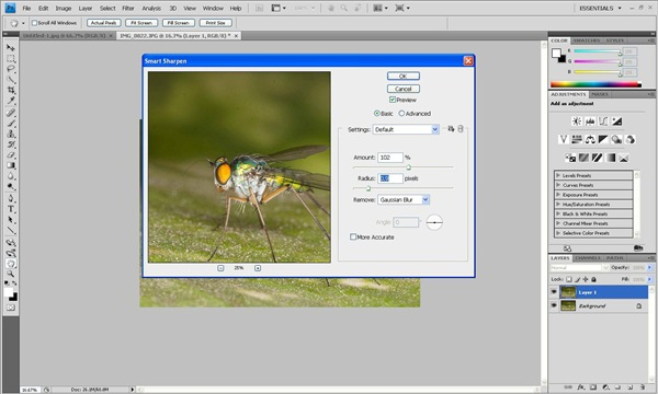 smart sharpen radius Photoshop Tutorial on Post Processing a Macro Photograph