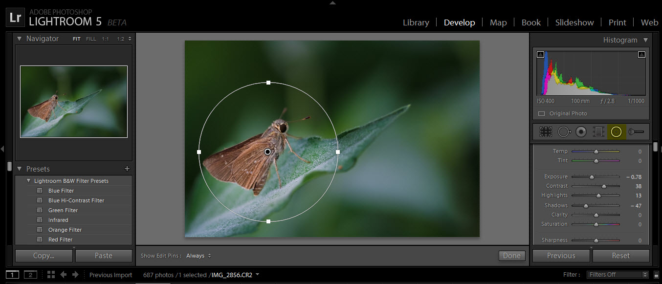 radial filter tool in lightroom 5 beta