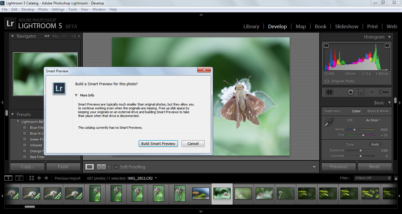 smart preview option in lightroom 5 beta