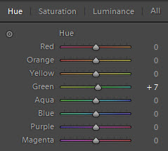 hue adjustment step 4